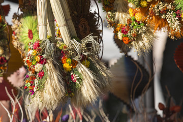 Various Dried and Colored Plants and Flowers for Home Decoration