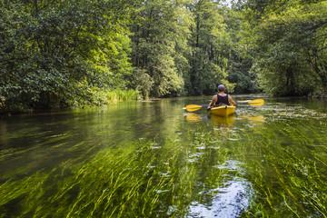 Kayaking on the Rospuda river, Poland