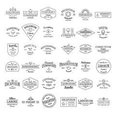 Vintage retro logo badges set