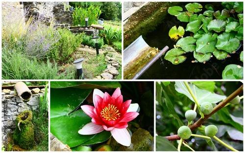 composition d\'aménagement d\'extérieur,fontaine,massif,jardin ...
