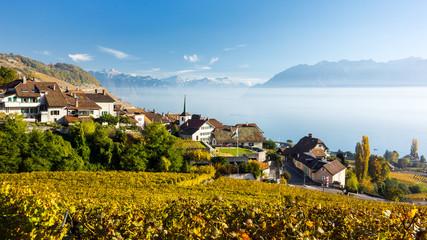 Lavaux, Genfersee, Schweiz