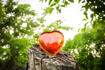 Vintage tone heart shape of red glass on timber in the park on blurred tree background
