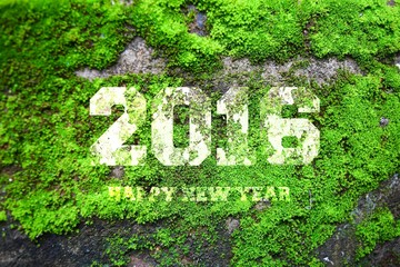 "The word ""2016"" written in old gray stone wall with green moss"