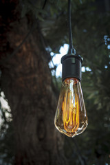 Edison style light bulb