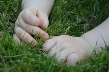 Baby erforscht Gras