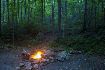 abandoned campfire burning in night forest