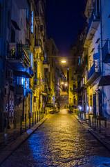 Garden Poster Napels night view of illuminated street leading through the historical center of italian city naples - napoli.