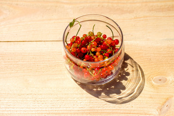 Red currants in a glass jar shadow left
