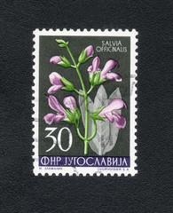 JUGOSLAVIJA - CIRCA 1972