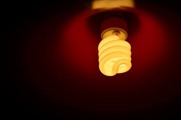 light of lamp