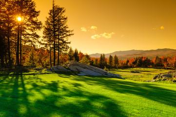 Fall foliage landscape.