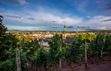 Blick auf Bad Kreuznach von der Kauzenburg aus