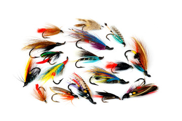 Trout and Salmon Fishing Flies on White