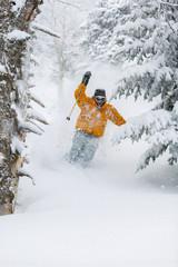 Expert skier skiing powder snow in Stowe, Vermont, USA