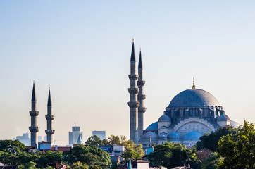 View on mosque in Istanbul