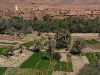 Деревня на склоне