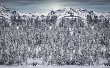 Just a snowy mountain
