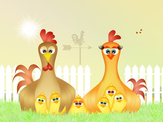 family of chickens