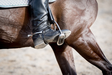 Closeup of a foot in a stirrup with a brown horse.