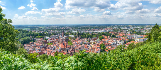 Ausblick über Weinheim bis Mannheim und zum Donnersberg  Wall mural