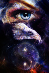 painting eagle  woman eye in space with stars.  yin yang