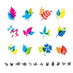 Set of 12 botanical icons.