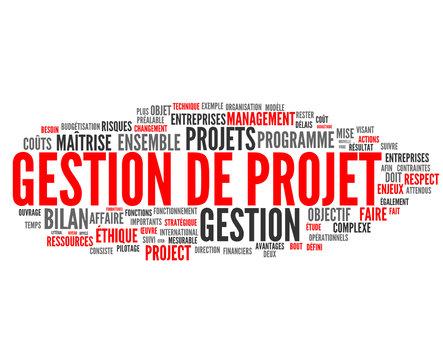 gestion de projet (management, innovation)