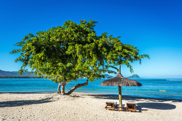 White sand beach with lounge chairs and umbrella in Mauritius Is
