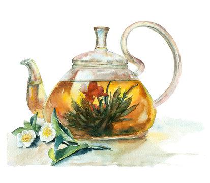 Watercolor tea in a glass teapot