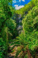 Door stickers Wailua Falls in a lush tropical valley on Maui, Hawaii, USA