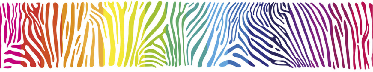 Background with Zebra skin in the rainbow colors