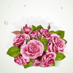 Bouquet of pink roses with a field for your lyrics banner.