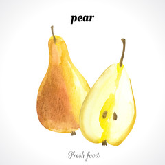 Watercolor pear. Provencal style. Recent watercolor paintings of organic food. Fresh fruit.