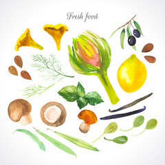 Watercolor illustration of a painting technique. Fresh organic food. Sfood, condiments and spices.