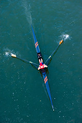 Sculler in Competition