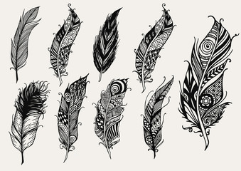 Set of hand drawn rustic decorative feathers
