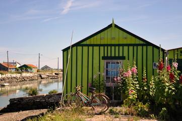 Les vélos et la cabane verte, Saint-Trojan-les-Bains, l'Ile d'Oléron