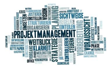 Projektmanagement Wort Wolke, blau