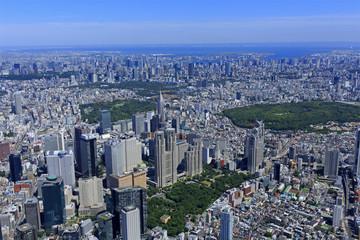 新宿副都心/新宿副都心から東京方面を望む