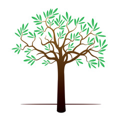 Color Tree and Green Leafs. Vector Illustration.