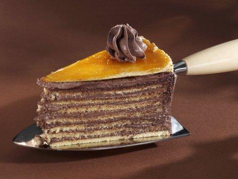 A piece of Dobos torte on a cake server