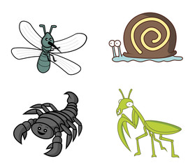 insect set mosquito.snail.scorpion.mantises