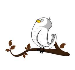 dove tree autumn