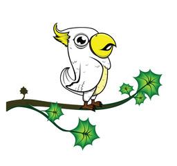 parrot tree