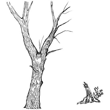 Hand drawn tree silhouette and stump