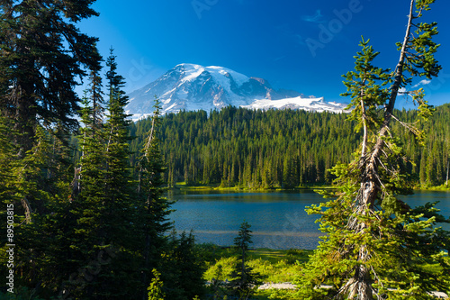 Wall mural Overlooking a lake and a forest of pine trees with Mt. Rainier l