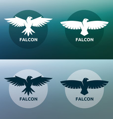 Flat symbols of falcon. Simple vector illustration.