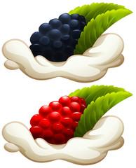 Rasberry and blackberry on cream