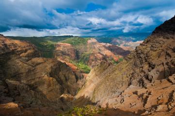 Overlooking Waimea Canyon State Park, Kauai, Hawaii, USA