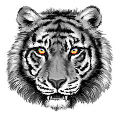 Powerful tiger with bright eyes